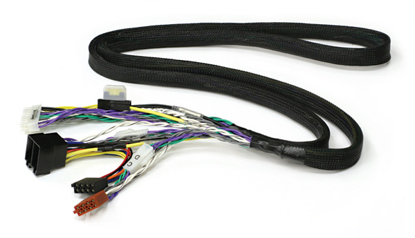 pp50dsp_cable.jpg